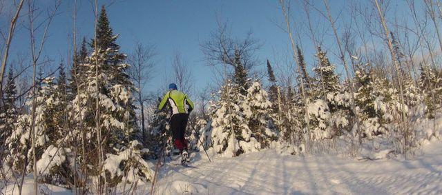 FB-skier