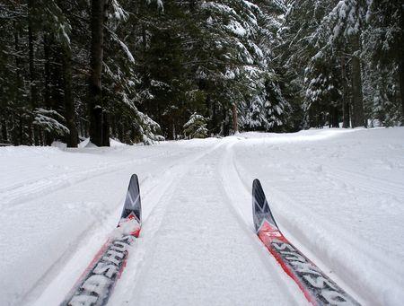 Nordic-Skiing-Wunderbar-2
