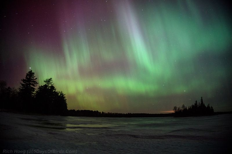 Northern-Lights-St-Patricks-Day-Aurora-04